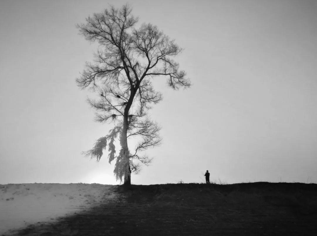 摄影 | 学好黑白摄影,先了解这十种影调!