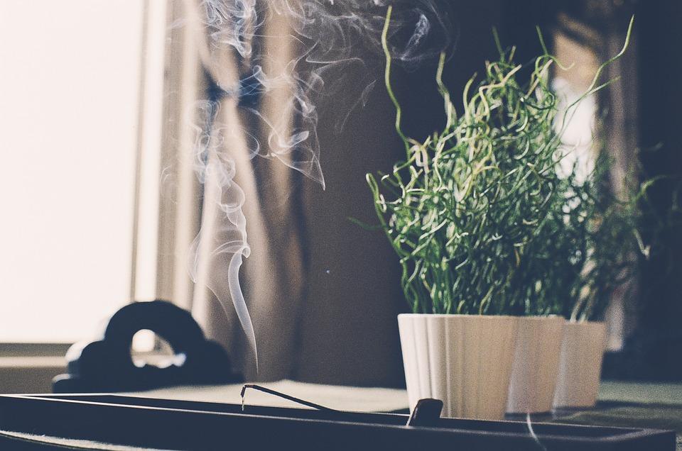 精微生活:六月末的心茶瑜伽